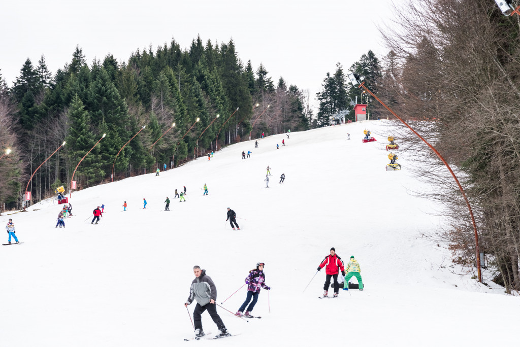 people skiing at a park